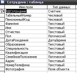 Скачать базу данных (БД) «Отдел кадров» MS Access